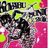 あのゴーストライターも出演するコヤブソニックにAKB48が参戦!